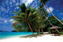 Enjoy the Beautiful Beaches of Vanuatu
